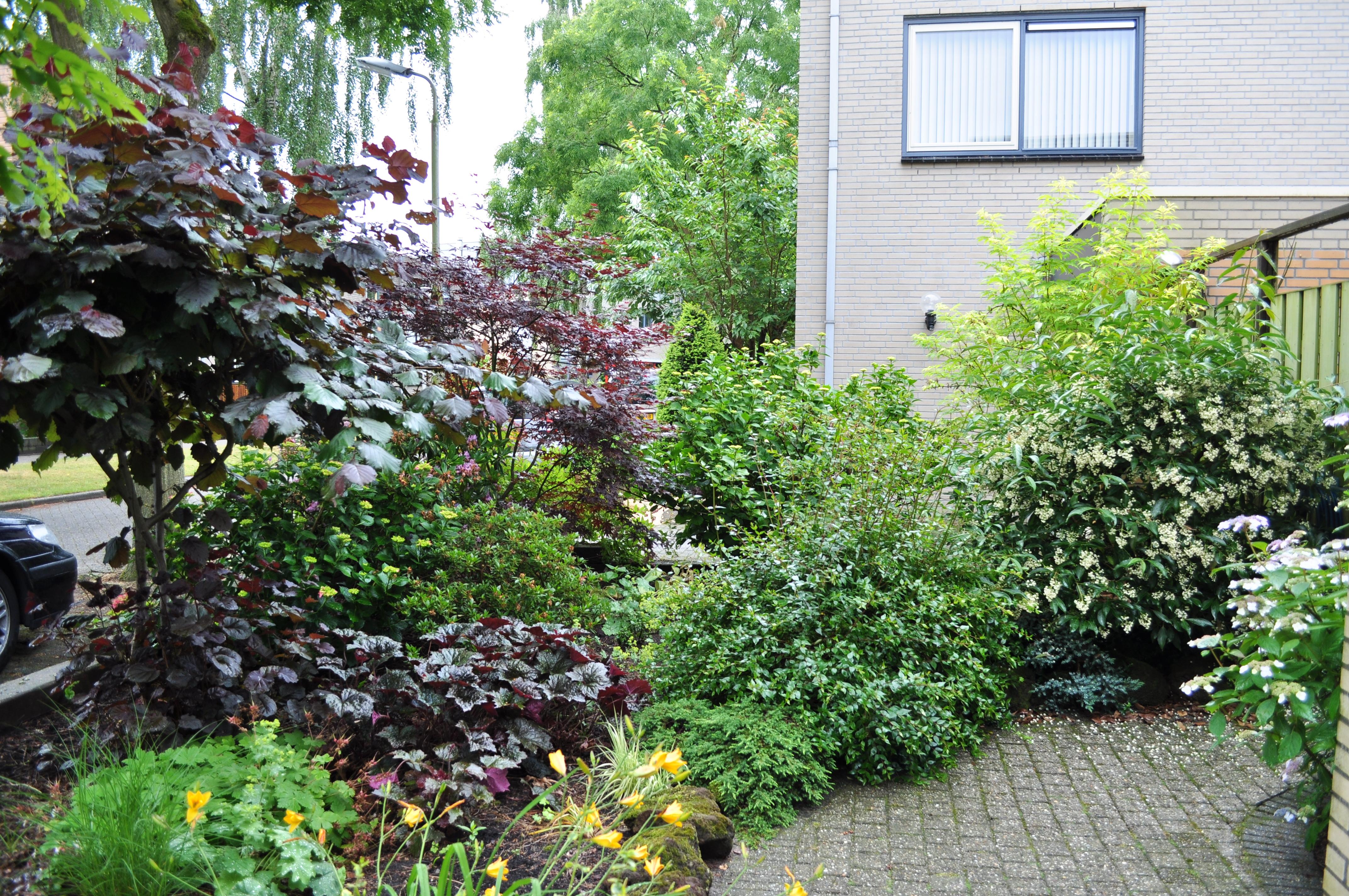 Tijd Voor Tuin : Tuinonderhoud bvo gardens breskens