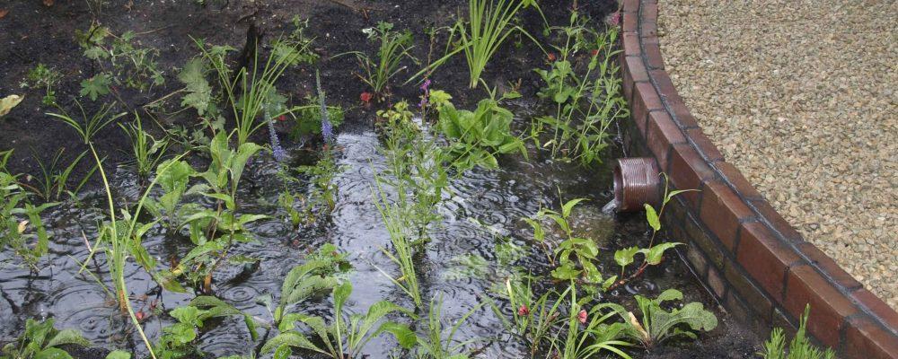 Kenniscafé van Operatie Steenbreek: 'Water in de tuin'